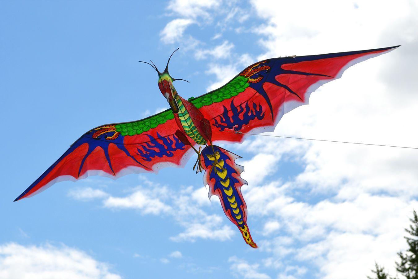 Воздушный змей подарочный Королевский рубиновый Дракон 1.6 м купить в Москве интернет-магазине - Фкайт.ру