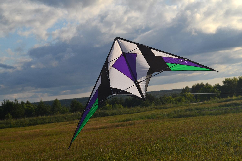 Фиолетовый Томагавк изображение 1