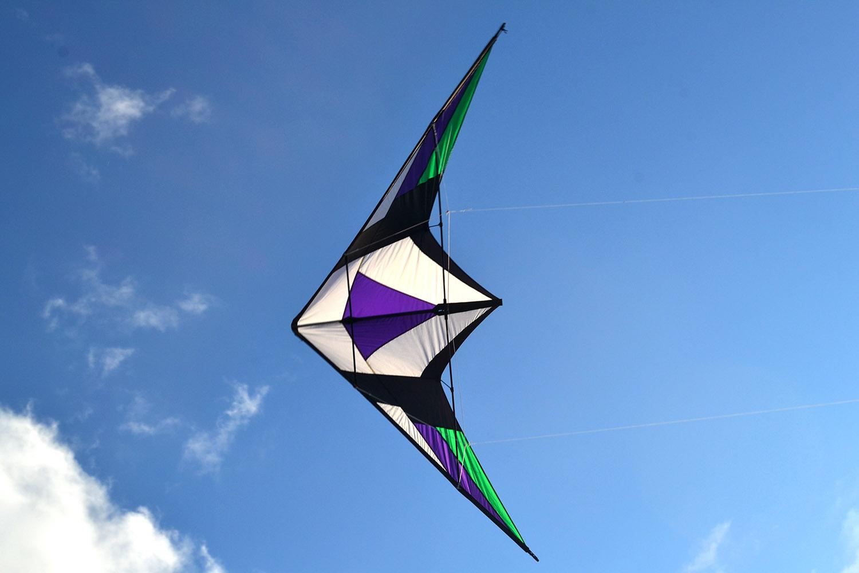 Фиолетовый Томагавк изображение 2