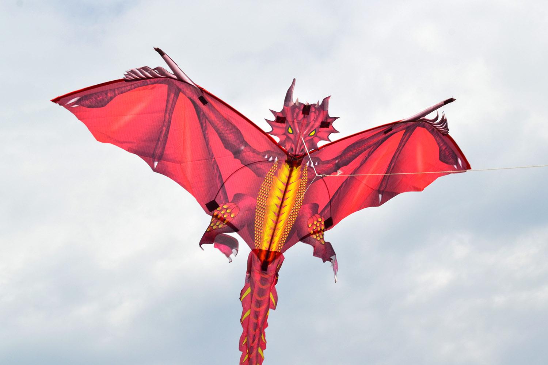 Огненный дракон изображение 0