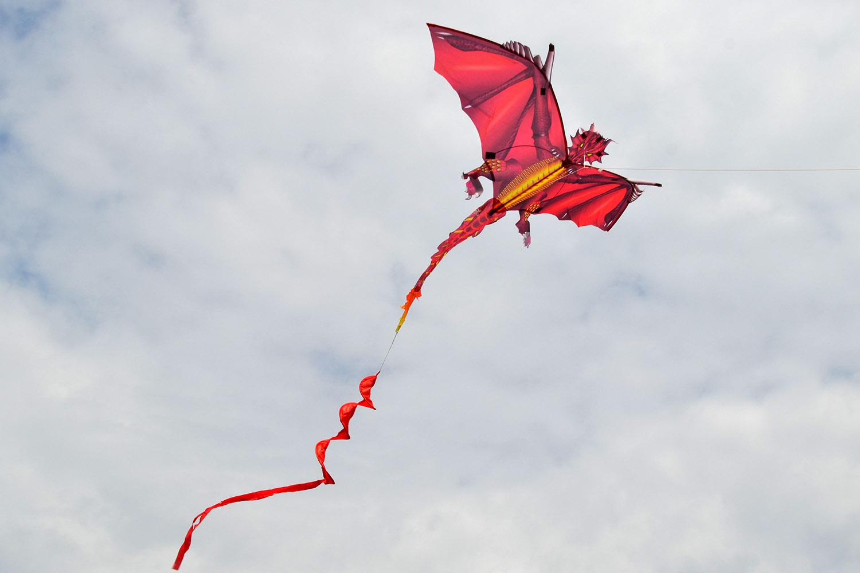 Огненный дракон изображение 1