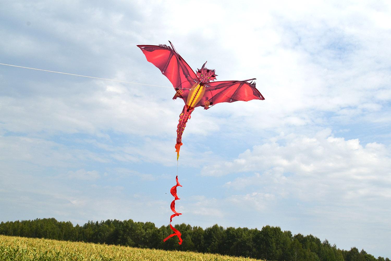 Огненный дракон изображение 2