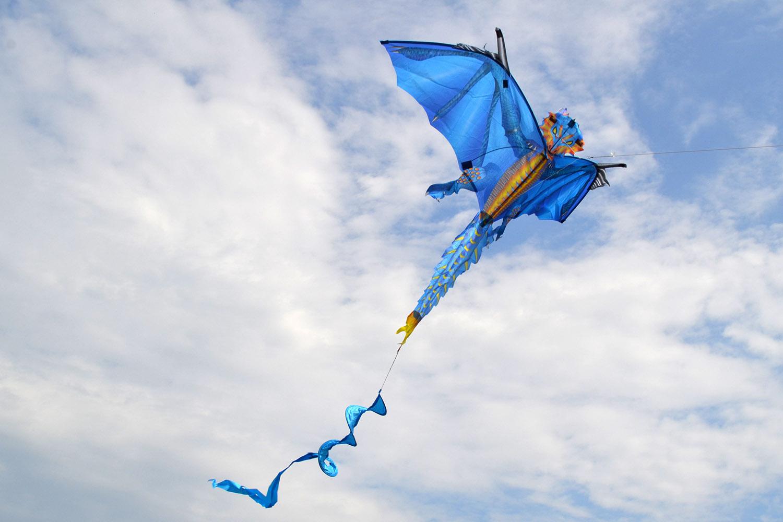 Ледяной дракон изображение 0