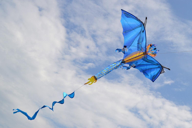 Ледяной дракон изображение 1