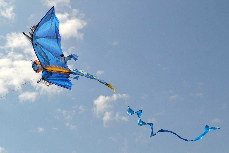 Ледяной дракон изображение 3