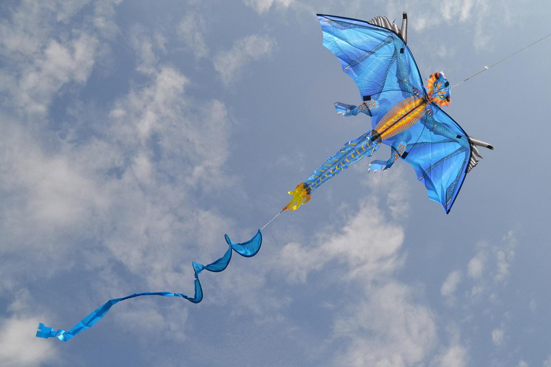 Ледяной дракон изображение 4
