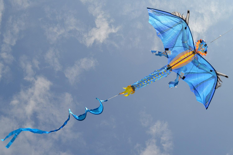 Ледяной дракон изображение 5