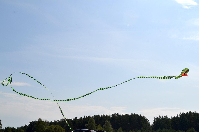 Кобра 45 метров изображение 7
