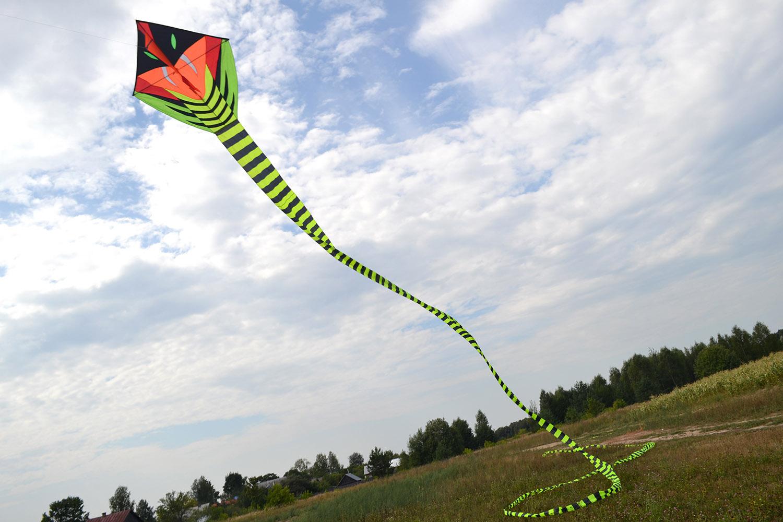 Кобра 60 метров изображение 0