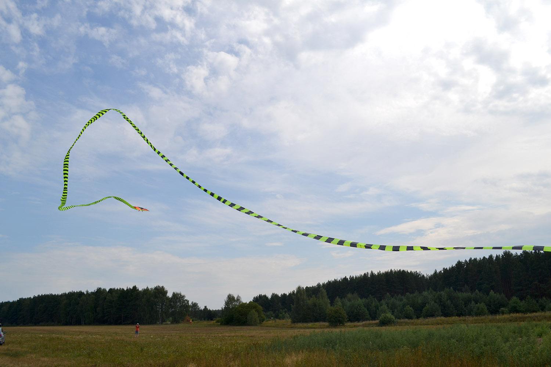 Кобра 60 метров изображение 3