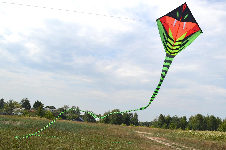 Питон 15 метров изображение 1