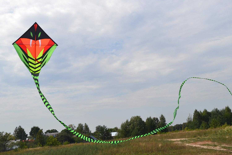 Питон 15 метров изображение 2