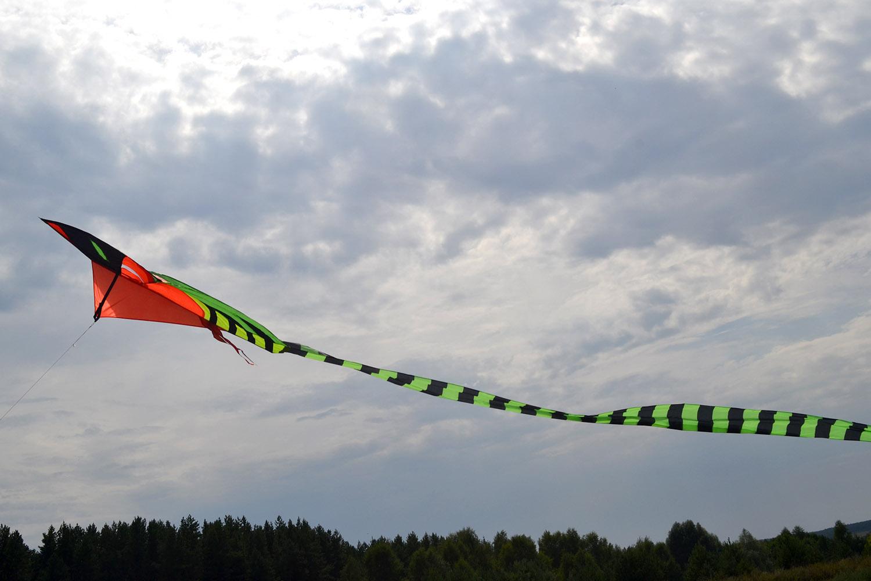Питон 15 метров изображение 3