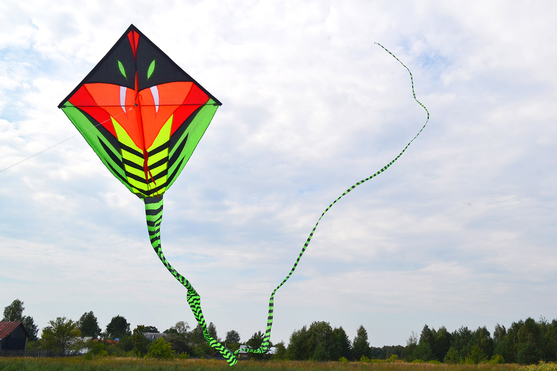 Питон 15 метров изображение 6