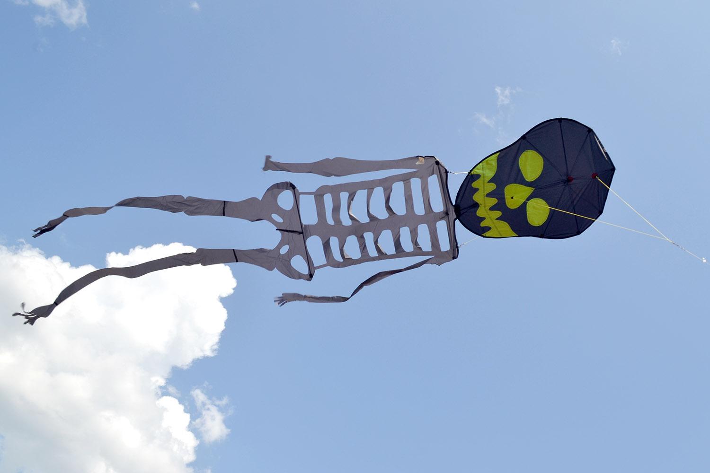 Скелет изображение 1