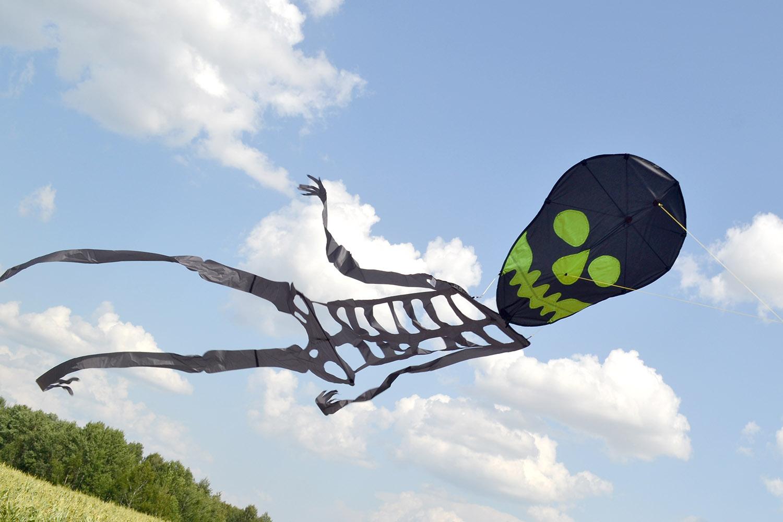 Скелет изображение 2