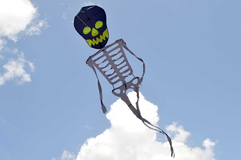 Скелет изображение 3