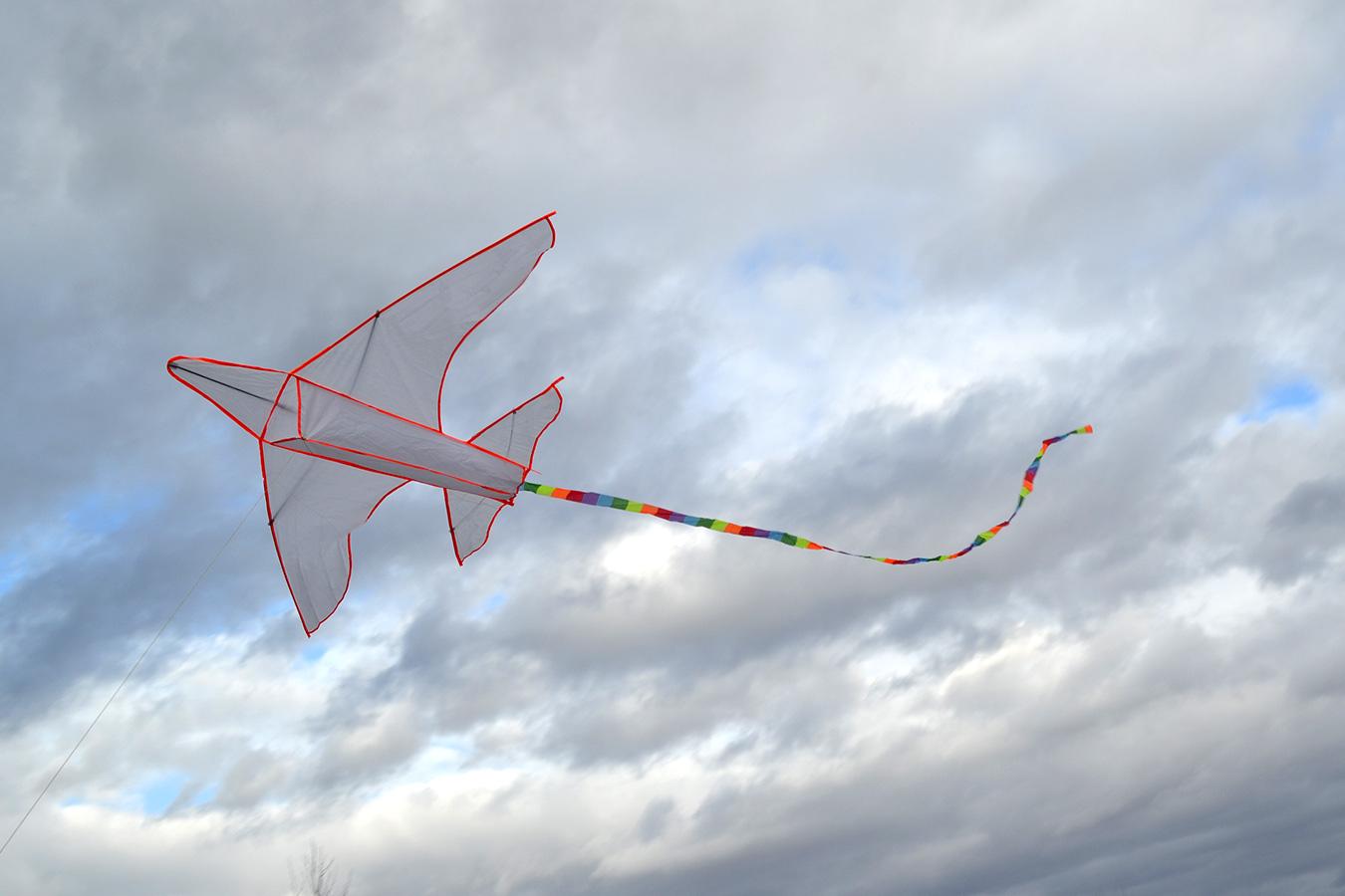 Большой самолет изображение 2