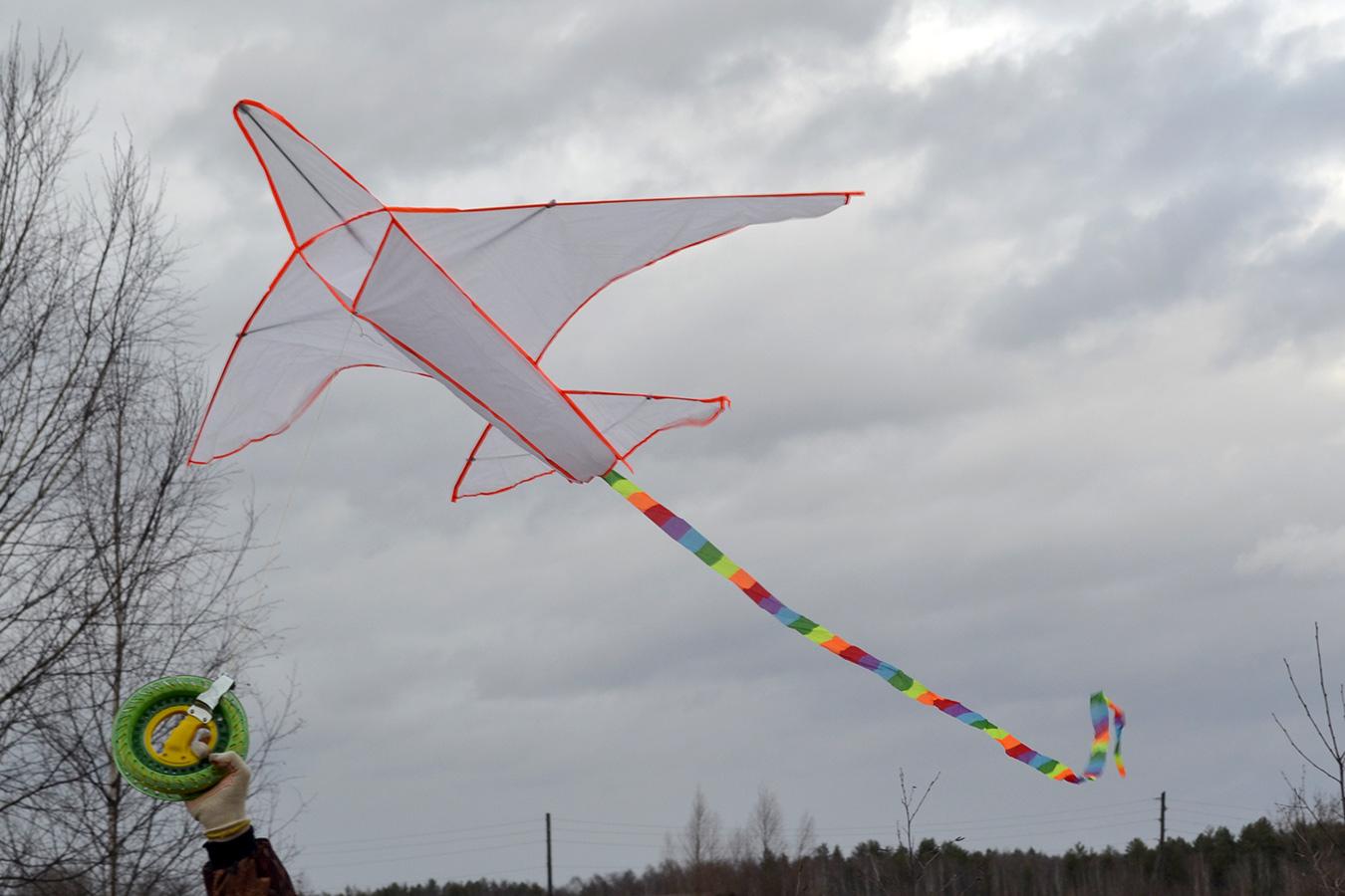 Большой самолет изображение 4