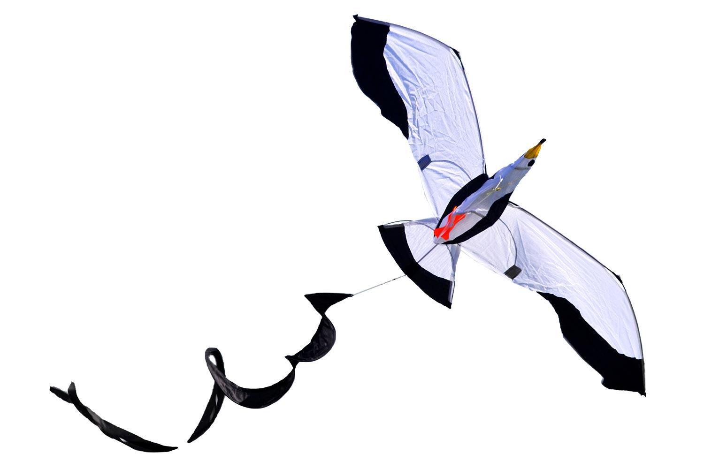 Чайка 3D, воздушный змей с турбиной [ZB572]