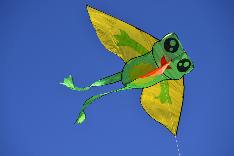 Лягушонок изображение 1