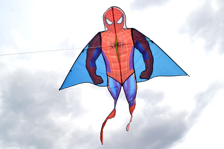 Человек-паук изображение 2