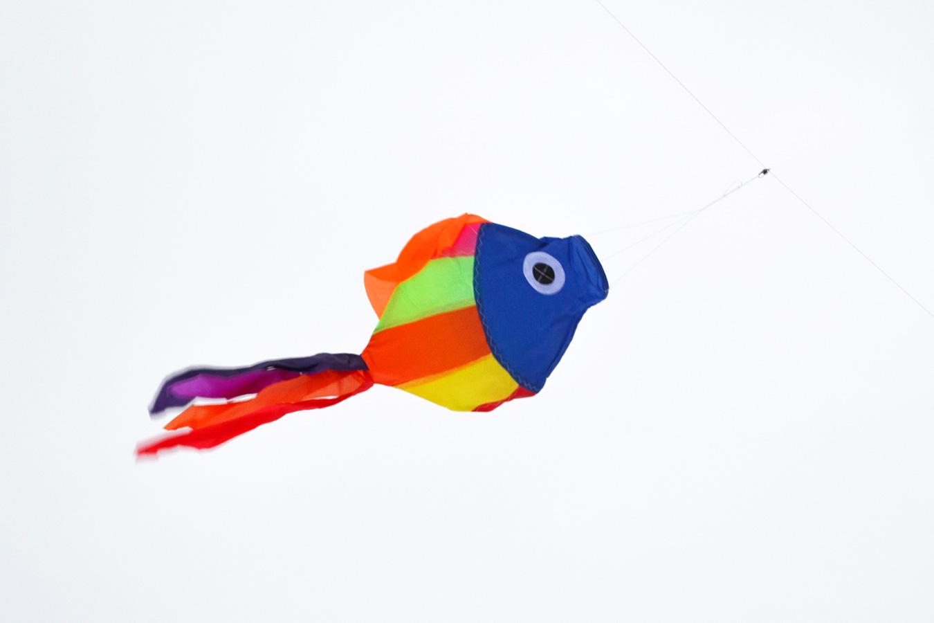 Рыбка изображение 1