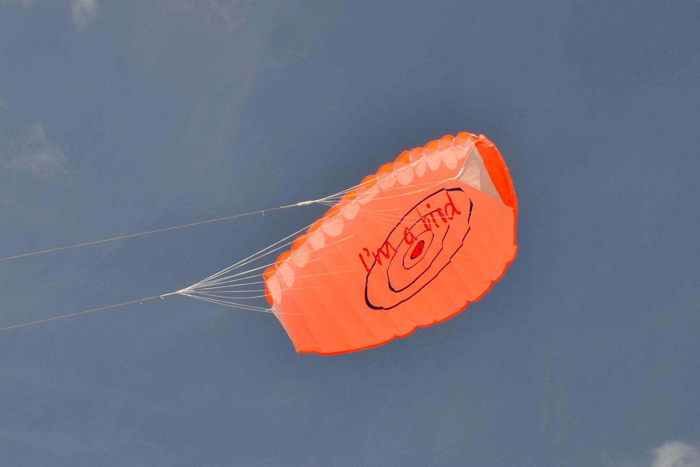 BIRD оранжевый изображение 0