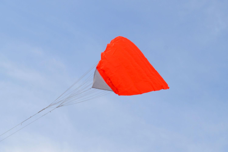 BIRD оранжевый изображение 3