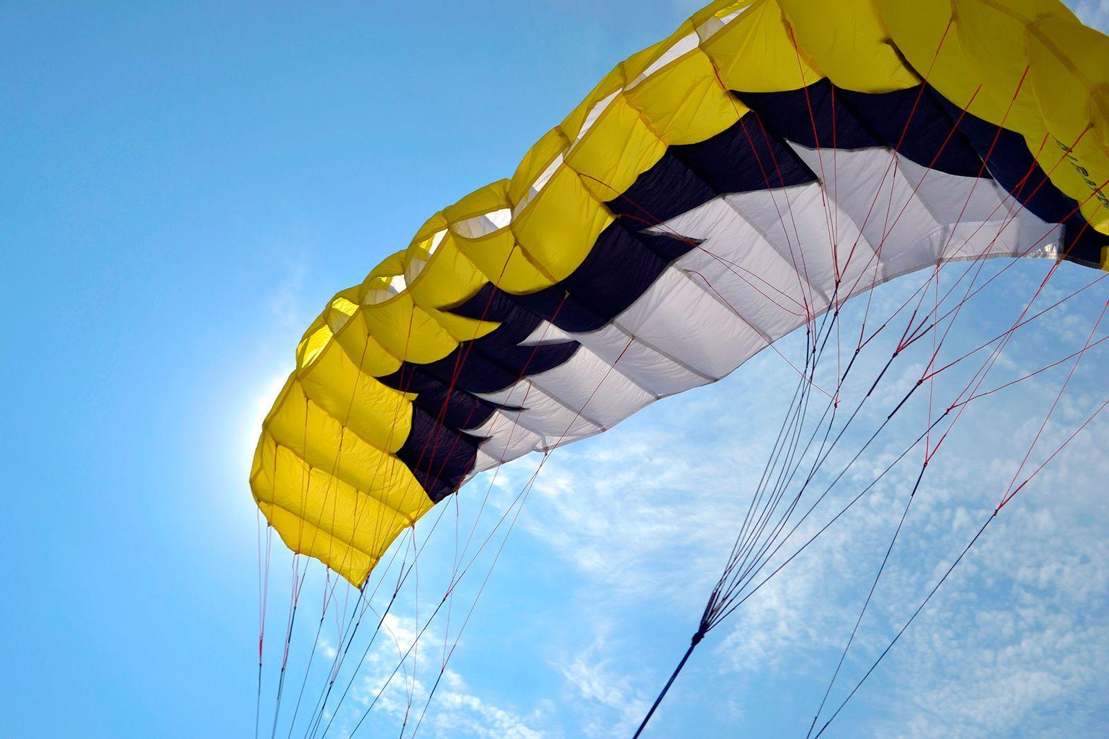 Желтый Альбатрос изображение 0