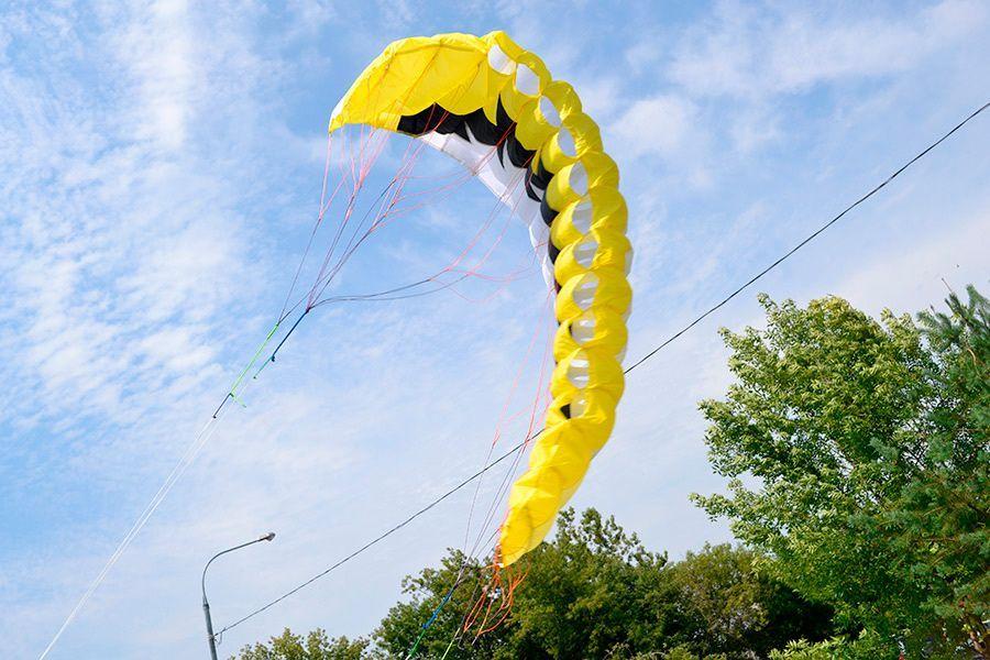 Желтый Альбатрос изображение 4