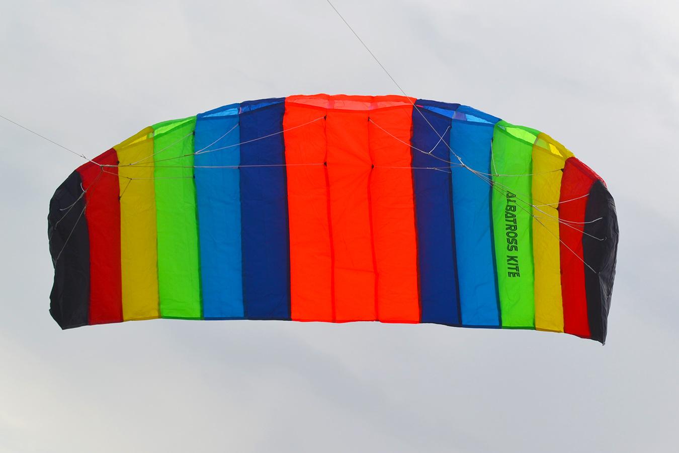Радужный Альбатрос изображение 3