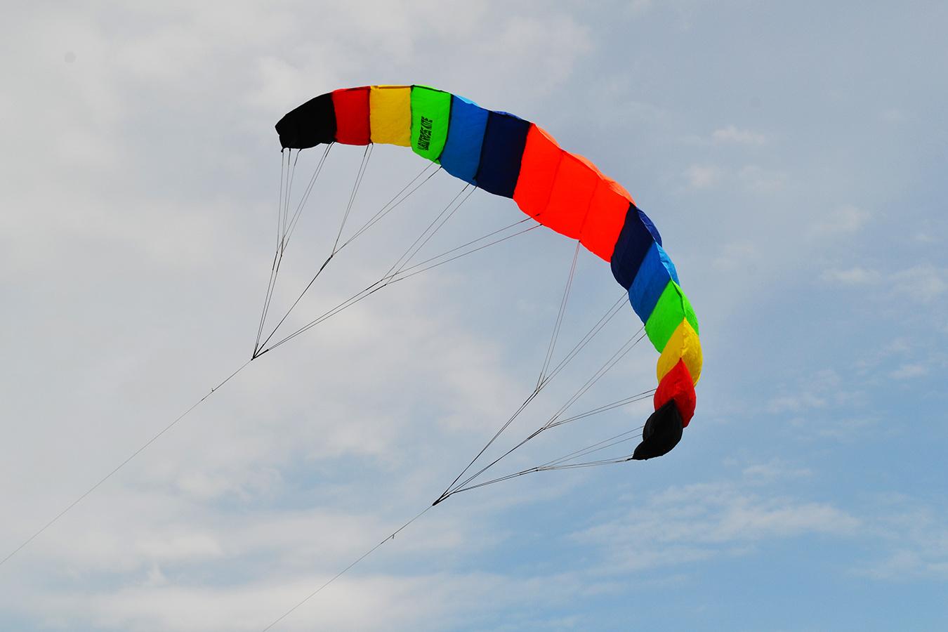Радужный Альбатрос изображение 4