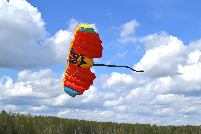 Красный Нетопырь изображение 0