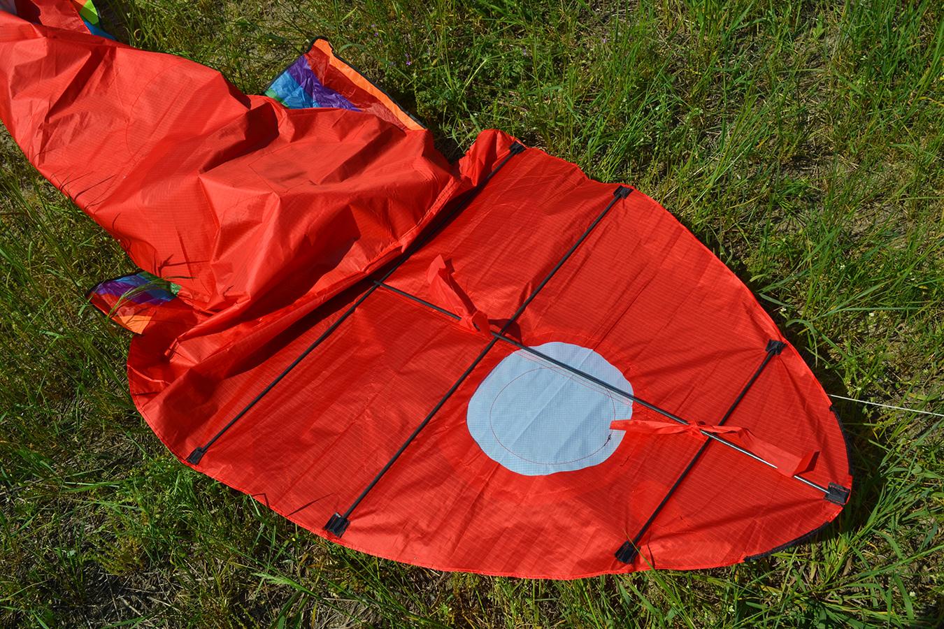 Красный барбус изображение 5