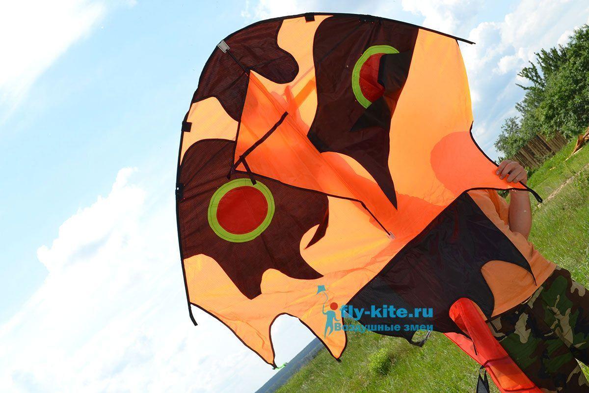 Большая сороконожка изображение 4