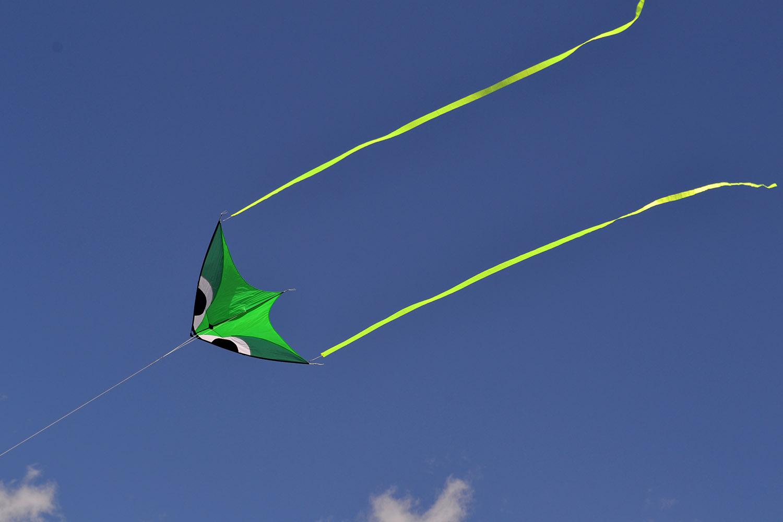 Фантом Зеленый изображение 0