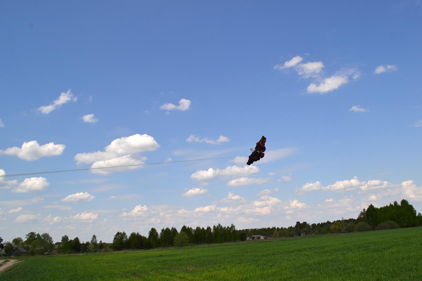 Имперский Орел изображение 1