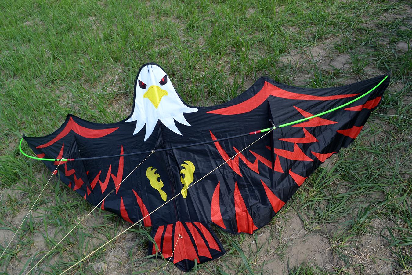 Имперский Орел изображение 3