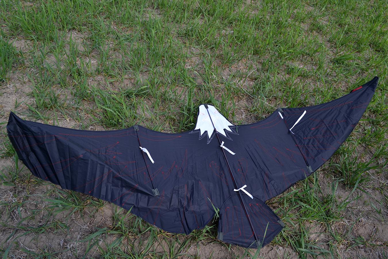 Имперский Орел изображение 4