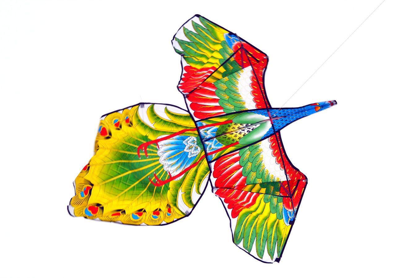 Жар птица изображение 0