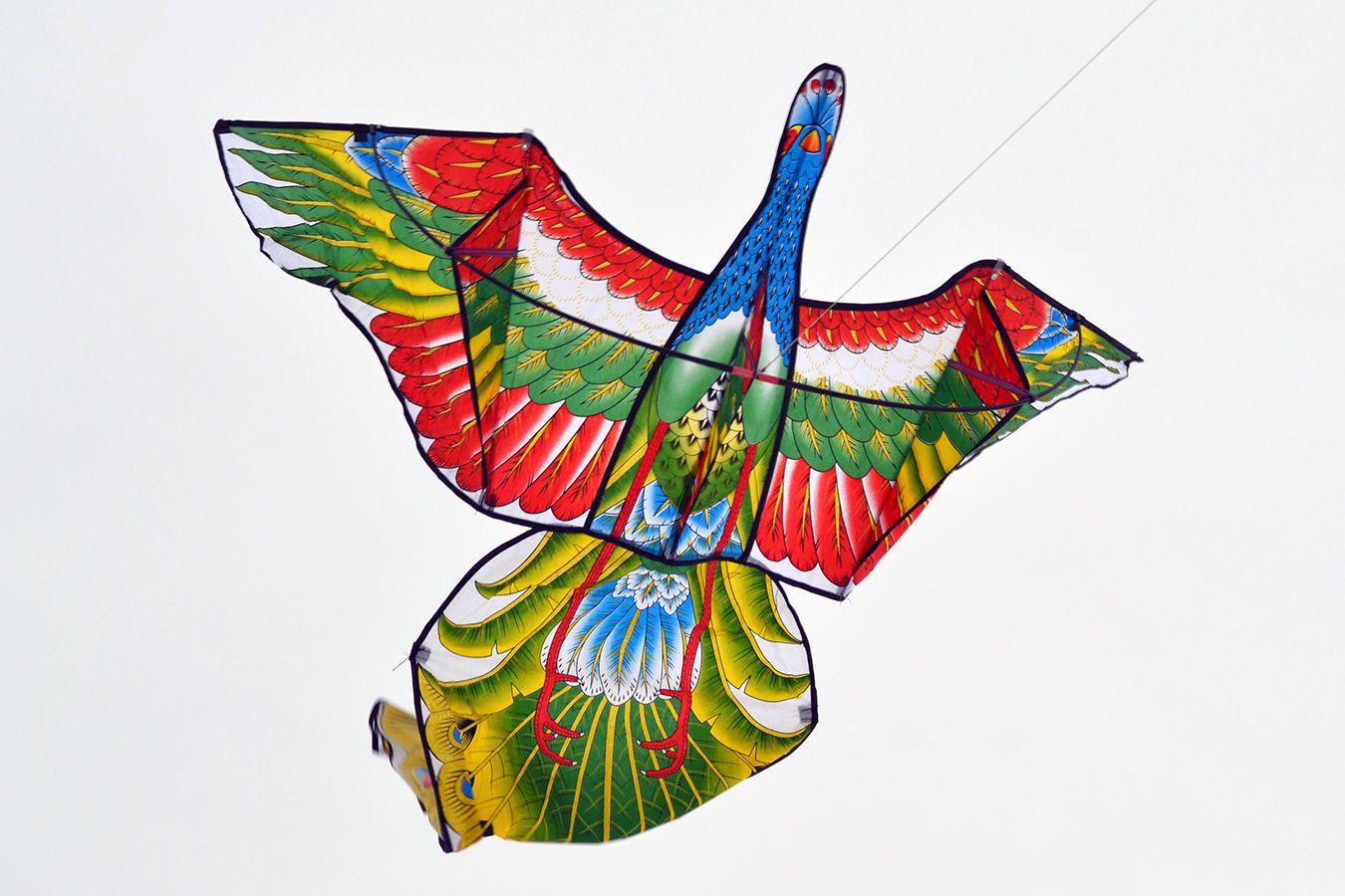 Жар птица изображение 1