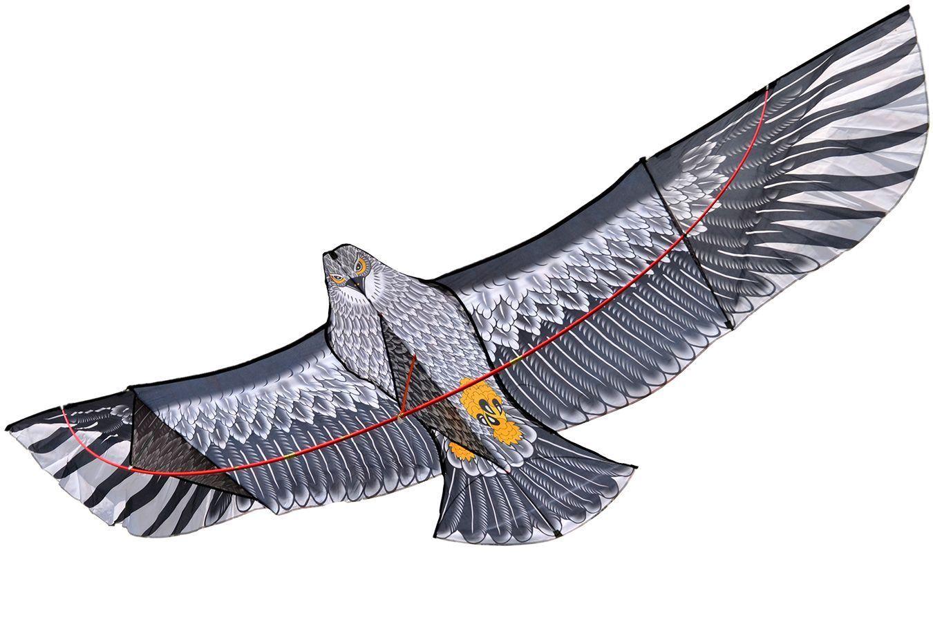 Змей воздушный Огромный сокол [ZBHF]
