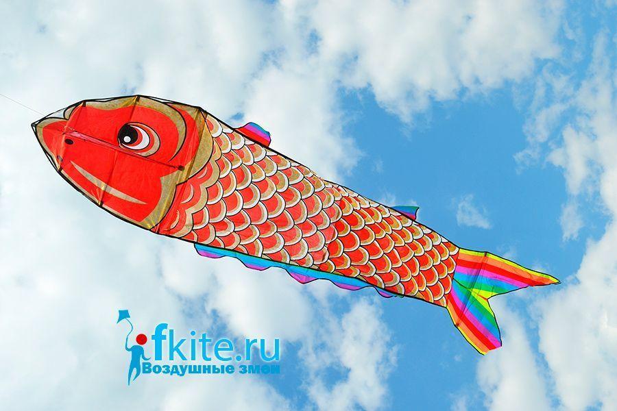 Золотая рыба изображение 0