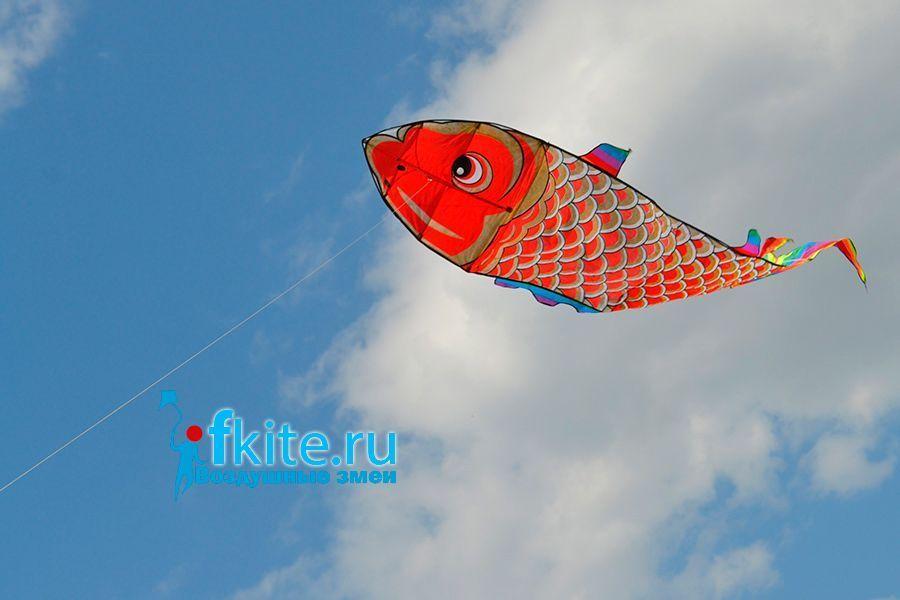 Золотая рыба изображение 1