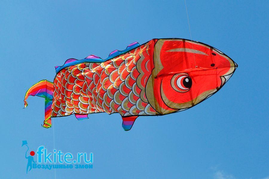 Золотая рыба изображение 2