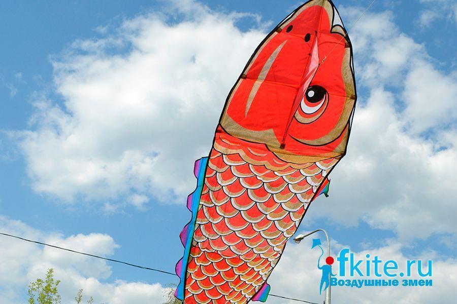 Золотая рыба изображение 3