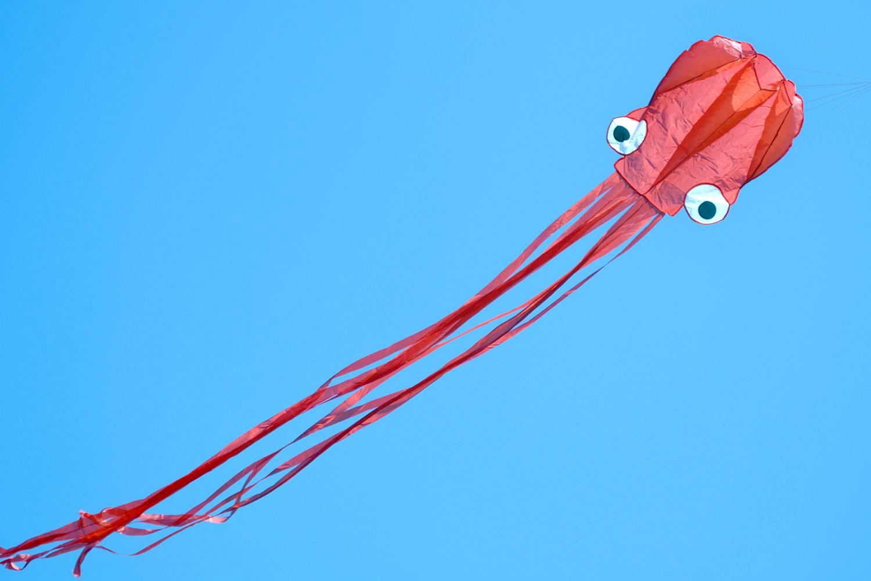 Красный осьминог изображение 1
