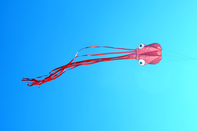 Красный осьминог изображение 2
