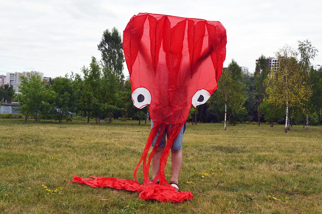 Красный осьминог изображение 3
